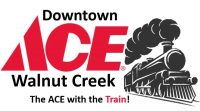 Ace With The Train Logo